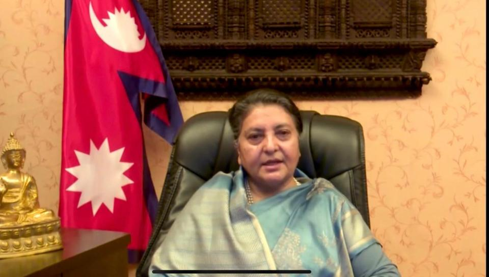 No case can be filed against President: Senior advocate Panta